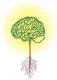 Brain tree. Vector illustration for a brain tree, inside is a lightning bulbs, metaphors Royalty Free Stock Image