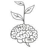 Brain Tree Arkivbilder