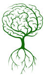 Brain Tree Stock Photos
