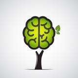 Brain tree Royalty Free Stock Photos