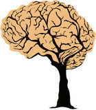 Brain Tree Stock Image