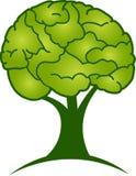 Brain tree logo Stock Photo
