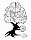 Brain. Tree on white background Stock Image