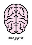 Brain vector– stock illustration – stock illustration file. Editable file stock illustration