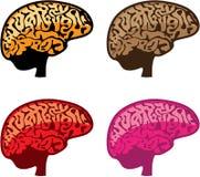Brain Vector eps Stock Photo