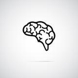 Brain vector icon Royalty Free Stock Photos