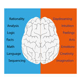 Brain vector illustration Stock Photography