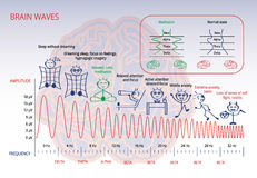 Brain waves stock image