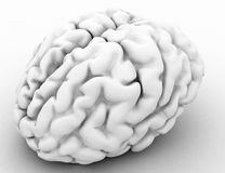Brain White. White 3d human brain model Royalty Free Stock Photography