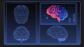 Brain wireframe graphic on monitor screen. For use as element of motion design stock illustration