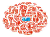 Brain Word Cloud. On a white background Royalty Free Stock Photo