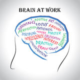 Brain at work Stock Photography