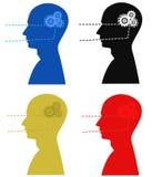 Brain works Stock Image