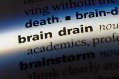braindrain Lizenzfreie Stockbilder