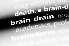 braindrain Stockbild