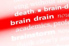 braindrain images libres de droits