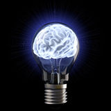 Brains. In the light bulb. isolated on white Royalty Free Stock Image