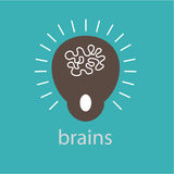 Brains Ideas  design  illustration graphic on background Stock Photos
