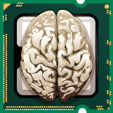 Brains inside. Illustration with human brains inserted in main processor unit as metaphor of new technologies Royalty Free Stock Photography