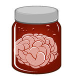 Brains in a jar. An illustration of a jar with brains inside royalty free illustration