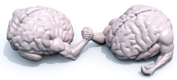 Brains that make arm wrestlin Royalty Free Stock Images