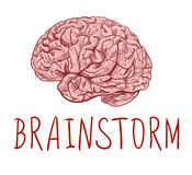 BRAINSTORM. Handwritten letters and outline drawing of human brain. Colored sketch Royalty Free Stock Photography