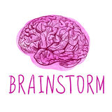 BRAINSTORM. Handwritten letters and outline drawing of human brain on watercolor spot. Stock Image