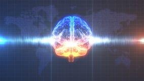 Brainstorm pomarańcze i błękitny cyfrowy mózg z brainwave animacją - Obraz Stock