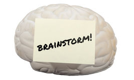Brainstorm! written on a model brain to generate ideas Stock Images