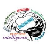 Brainstorming. Abstract colorful illustration with an isolated brain surrounded with words related to the brainstorming concept Royalty Free Stock Image