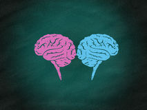 Brainstorming concept,brain maze puzzle Stock Photos