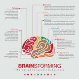 Brainstorming sprit color infographic Stock Photos