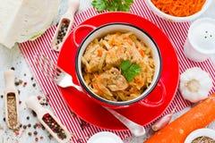 Braised капуста с мясом и морковью Стоковая Фотография RF
