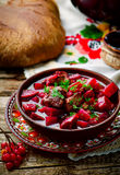 Braised beef with beet. Royalty Free Stock Photography