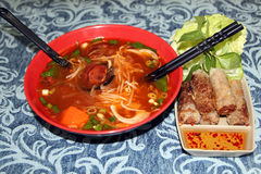 Braised beef rice noodles with fried spring rolls Royalty Free Stock Image