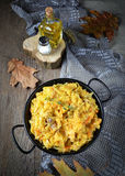 Braised cabbage with minced meat Royalty Free Stock Photography