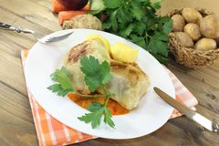 Braised cabbage roulade with potatoes and sauce Royalty Free Stock Photos