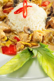 Braised Chicken Slice with Rice Heap Stock Photo