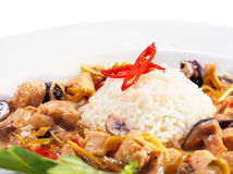 Braised Chicken Slice with Rice Heap Royalty Free Stock Photo
