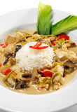 Braised Chicken Slice with Rice Heap Royalty Free Stock Images