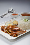 Braised Duck Meat Rice Royalty Free Stock Images