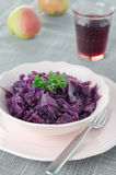 Braised Red Cabbage With Apple Royalty Free Stock Images