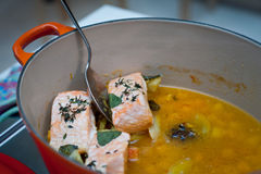 Braised salmon in professional kitchen. Braised salmon with herbs in professional kitchen Royalty Free Stock Image