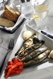 Braised sardines and red peppers Royalty Free Stock Image