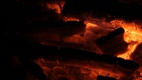 Braises d'un rouge ardent pour la viande de torréfaction banque de vidéos