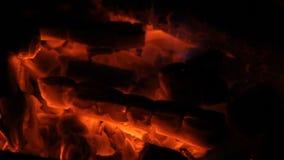 Braises d'un rouge ardent pour la viande de torréfaction clips vidéos