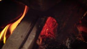 Braises en feu en bois banque de vidéos