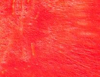 Braja czerwony arbuz Zdjęcia Stock
