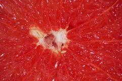 Braja grapefruitowy w górę makro- T?o z miejscem dla teksta obrazy stock