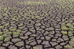 Brak woda w rezerwuarów polach Obraz Royalty Free